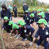 南舞鶴地域の活性化事業で桜の木を植えてきました。